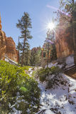 Bryce Canyon National Park Sun and Snow stock photography