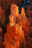 Bryce Canyon National Park Sunrise Royalty-vrije Stock Afbeelding