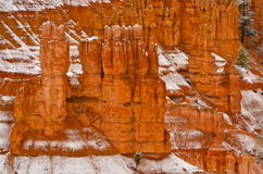 Bryce Canyon National Park, USA Stock Photo