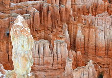 Bryce Canyon National Park, USA Stock Images