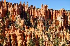 Bryce Canyon National Park, Utá Fotografia de Stock