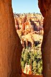 Bryce Canyon National Park, Utá Fotos de Stock Royalty Free