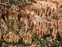 Bryce Canyon National Park, Utá, EUA Foto de Stock Royalty Free