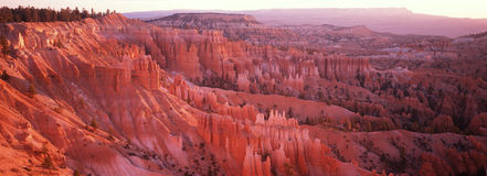 Bryce Canyon National Park, UT Stock Photo