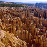 Bryce Canyon National Park, Utah. Stock Photos