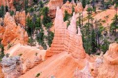 Bryce Canyon National Park, Utah Stockbild