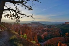 Bryce Canyon National Park Utah-de lente van de zonsopgangzomer met boom en ongeluksboden stock afbeeldingen