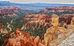 Bryce Canyon National Park, Utah, de V Stock Afbeelding