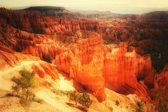 Bryce Canyon National Park, Utah, de V Royalty-vrije Stock Foto