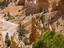 Bryce Canyon National Park, Utah, Etats-Unis Image stock