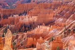 Bryce Canyon National Park Utah, Förenta staterna Royaltyfri Bild