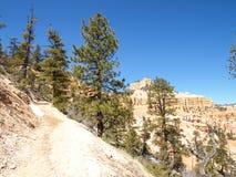 Bryce Canyon National Park Utah, Förenta staterna Royaltyfri Foto