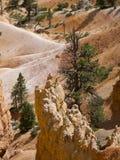 Bryce Canyon National Park, Utah, los E Fotografía de archivo