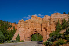 Bryce canyon national park utah Stock Images