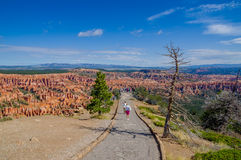 Bryce canyon national park utah Royalty Free Stock Photography