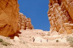 Bryce Canyon National Park Utah. Picture of hoodoos at Bryce Canyon National Park in Utah royalty free stock image