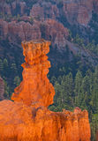 Bryce Canyon National Park, Utah Southwest USA Stock Image