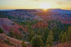 Bryce Canyon National Park Utah sunrise summer spring with long view and pine trees royalty free stock images