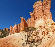 The Bryce Canyon National Park Utah, United States. Stock Photo