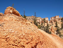 The Bryce Canyon National Park Utah, United States. Royalty Free Stock Photo