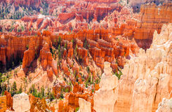 The Bryce Canyon National Park, Utah, United States Royalty Free Stock Images