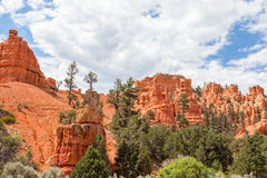 Bryce canyon national park in Utah Royalty Free Stock Photo