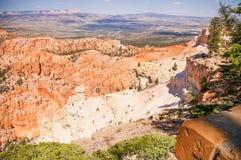 Bryce Canyon National Park Utah, USA. Royaltyfri Fotografi