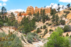 Bryce Canyon National Park in Utah Royalty Free Stock Photos