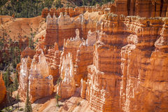 Bryce Canyon National Park in Utah, USA Royalty Free Stock Images