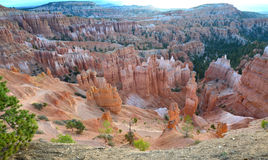 Bryce canyon national park, utah, usa.colored eroded hoodoos Royalty Free Stock Photography