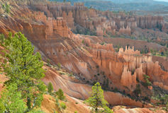 Bryce canyon national park, utah, usa.colored eroded hoodoos Stock Photos
