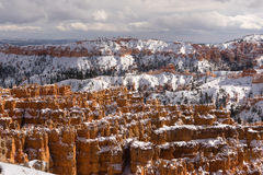 Bryce Canyon National Park Utah USA North America. Fresh snow falls in Bryce Canyon in late November royalty free stock photography
