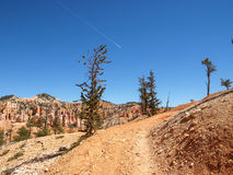 Bryce Canyon National Park Utah, Vereinigte Staaten Stockfotografie
