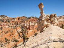 Bryce Canyon National Park Utah, Verenigde Staten Royalty-vrije Stock Fotografie