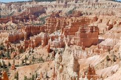 Bryce Canyon National Park Utah. Wide picture of hoodoos at Bryce Canyon National Park in Utah Royalty Free Stock Photography