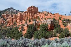 Bryce Canyon National Park. View at the entrance to the Bryce Canyon National Park Stock Photography