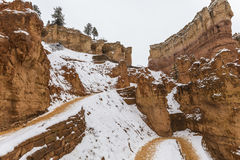 Bryce Canyon National Park Wall Street Trail with Snow stock image