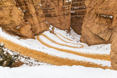 Bryce Canyon National Park Wiggles Trail Stock Photography