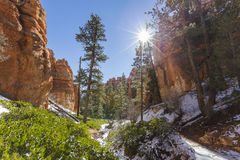 Bryce Canyon National Park Winter Canyon Stock Images