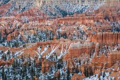 Bryce Canyon National Park Winter Landscape Stock Photography