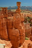 Bryce Canyon Natl Park Photographie stock