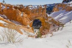 Bryce Canyon - naturbågebro - som fotvandrar i snön arkivbilder