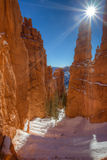 Bryce Canyon Navajo Trail Stock Photo
