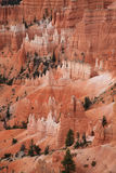 Bryce Canyon NP Stock Photography