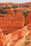 Bryce Canyon NP Stock Photos