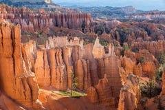 Bryce Canyon-ongeluksboden Stock Foto