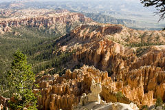 Bryce canyon overlook Royalty Free Stock Photos