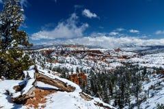 Bryce Canyon panorama, journal och träd med snö och blå himmel Arkivfoto