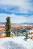Bryce canyon panorama with snow Stock Photos