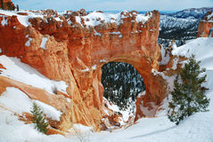 Bryce canyon panorama with snow Stock Photography